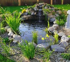 Как украсить свой пруд