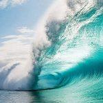 Какие полезные ископаемые добывают в океане