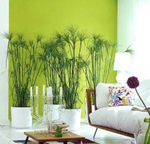 Комнатные растения и оформление гостиной