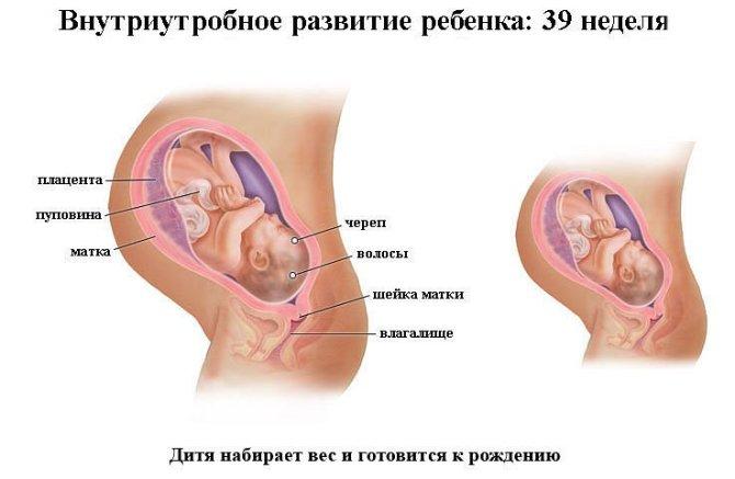 Срок беременности 39 недель