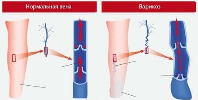 медицинские центры краснодара