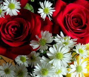 Как организовать бизнес на продаже цветов