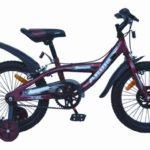 Выбираем детский двухколёсный велосипед. Где купить.