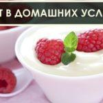 Готовим йогурт в домашних условиях. Где купить качественное молоко для его приготовления.